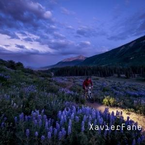 Lupin Trail - Mountain biking at night!