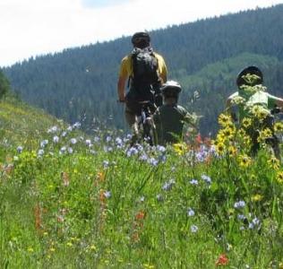 Best Mountain Biking Destination